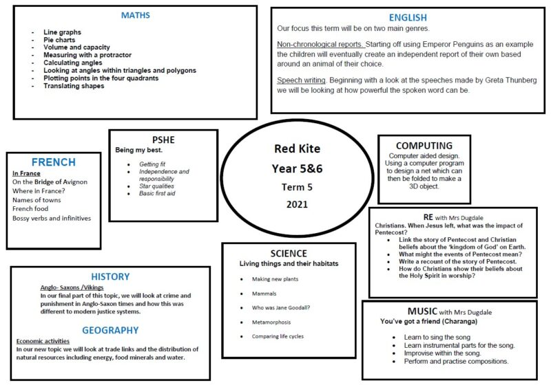 Red Kite Term 5 topic web