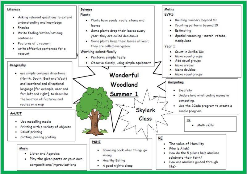Wonderful Woodland Topic web Summer 1